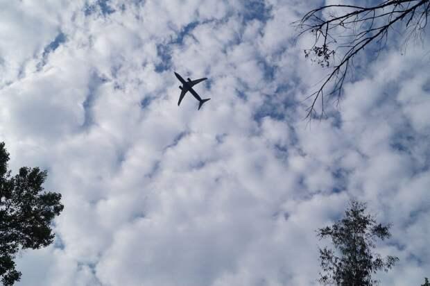 Из Курска в Симферополь начнут летать самолеты компании «ИрАэро»