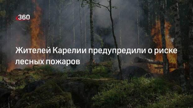 Жителей Карелии предупредили о риске лесных пожаров