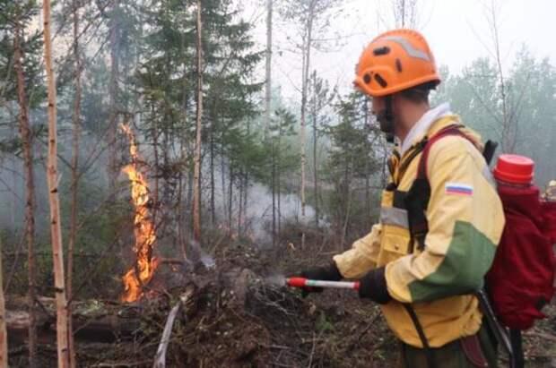 Ситуация с лесными пожарами в  Сибири резко ухудшилась