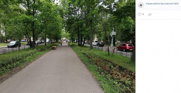 В сквере на улице Егора Абакумова появились новые лавочки и клумбы