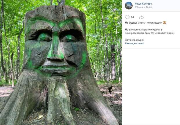 Фото дня: деревянные охранники Тимирязевского парка