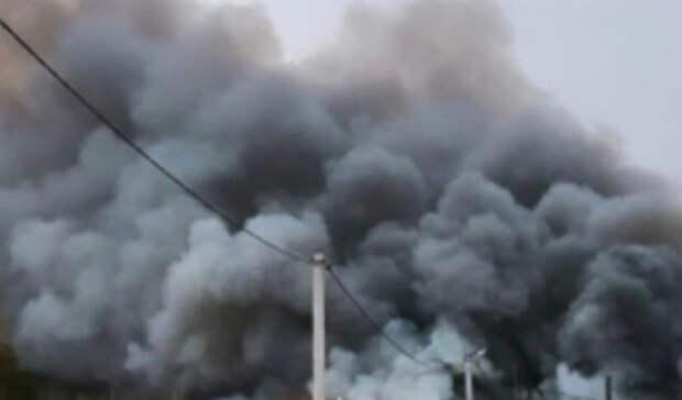 ВТюменской области лесной пожар дошёл докладбища Вагайского посёлка