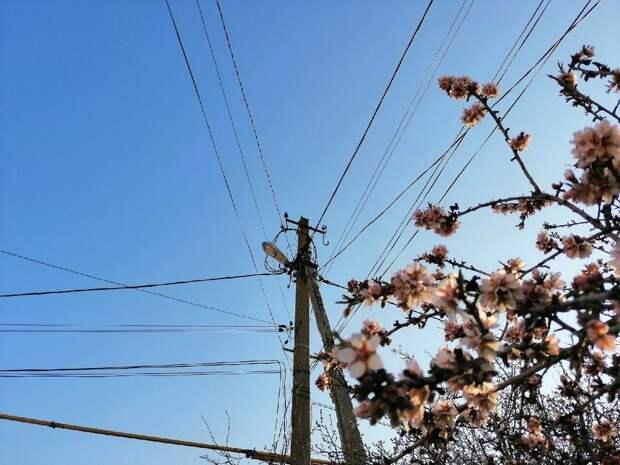 В Симферополе 17 апреля на 3 улицах частично отключат электричество