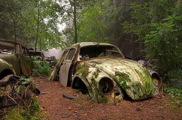 Люди бросили машины в пробке 70 лет назад: дорога-призрак