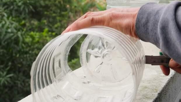 Выращиваем ароматную мяту — удобно, просто и чисто