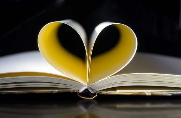 Адресная Книга, Ноутбук, Книга, Заметки, Я Студент
