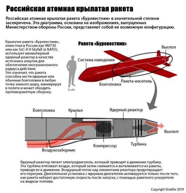 Схема крылатой ракеты с ядерной энергетической силовой установкой « Буревестник». Мнение западных аналитиков