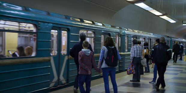 Работу двух веток метро Москвы скорректировали из-за закрытия участка «Дубровка» – «Волжская»