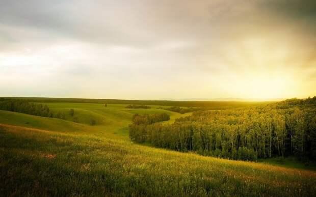 К выходным в Удмуртию вернётся жара