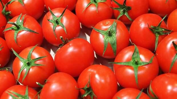 Россия ввела запрет на ввоз томатов из Белоруссии