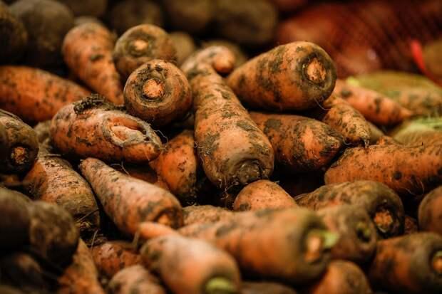 В Крыму резко выросли цены на морковь и картофель