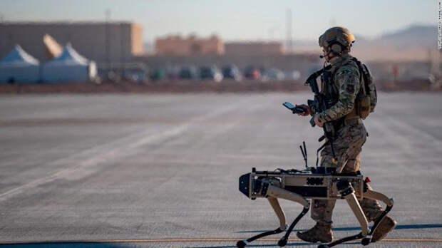 Роботы-собаки в помощь военным