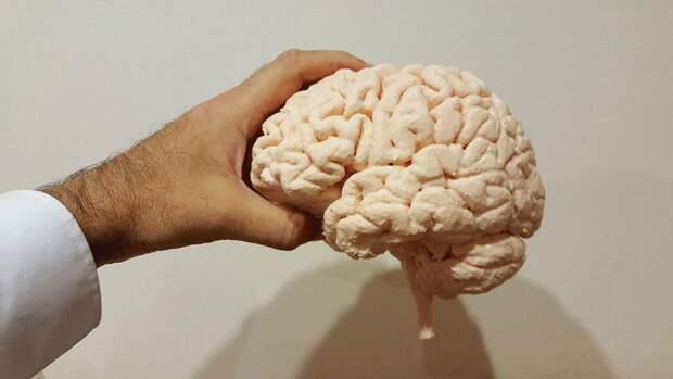 Ученые нашли способ стирать из памяти грустные моменты
