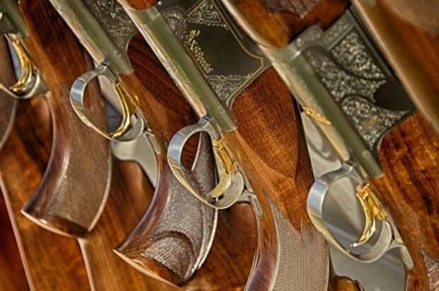 Парламент Татарстана предложил Госдуме повысить возраст покупки оружия