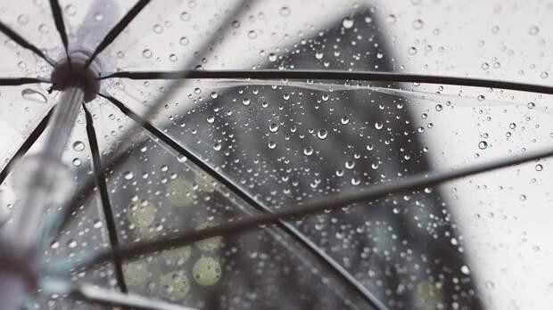 Теплая и дождливая погода ожидается в Петербурге 26 октября