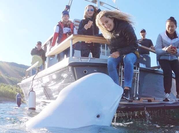 Про знаменитого «российского кита-шпиона» хотят снять фильм
