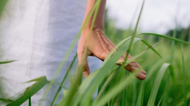 Пальцевой индекс: какопределить, есть лиуваспроблемы сгормонами