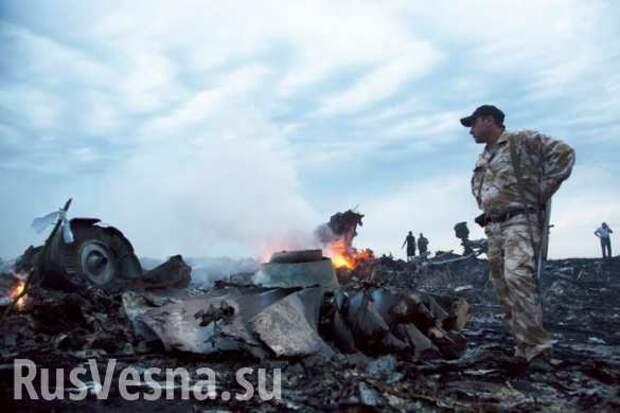 «Дело МН17»: Голландского депутата «прессуют» за свидетеля из ДНР, видевшего самолёт около «Боинга»