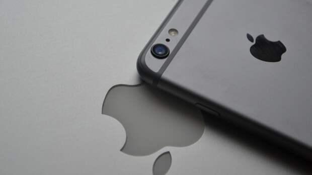 Власти Японии планируют проверить деятельность компаний Google и Apple