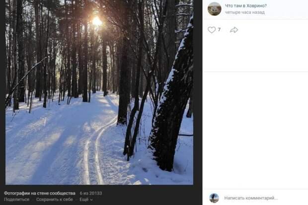Фото дня: в Химкинском лесопарке заметили свежую лыжню