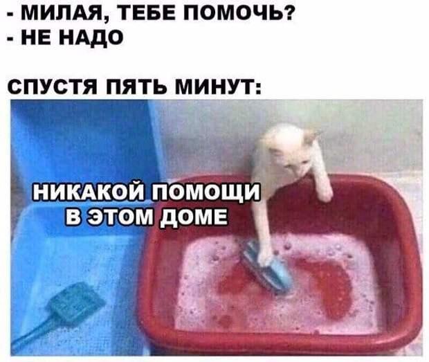 Вообще-то, попа любит мягкую кровать, теплую ванну, нежное мыло...
