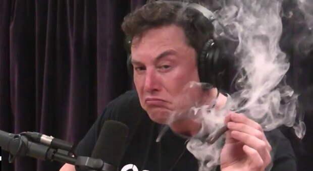 Как тебе такой провал, Илон Маск?