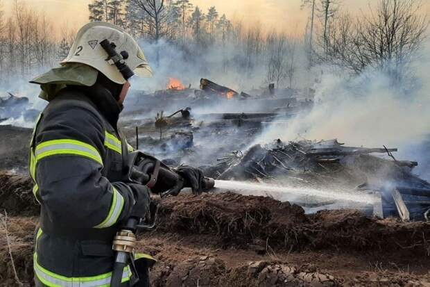 Центральную Россию накрыли ландшафтные пожары