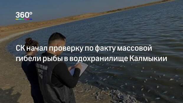 СК начал проверку по факту массовой гибели рыбы в водохранилище Калмыкии