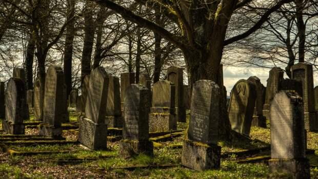 Участок земли с могилами продали частнику новосибирские чиновники