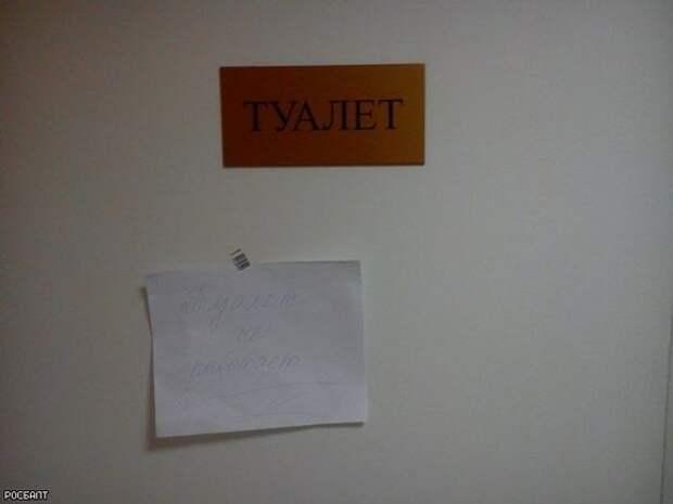 Опроса сервиса Зарплата.ру: каждый пятый россиянин стесняется пользоваться туалетом на работе