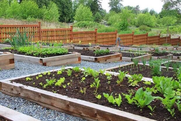 Уют на садовом участке своими руками (идеи)
