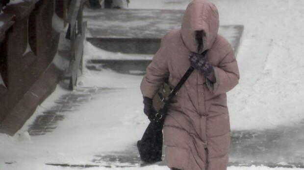 Морозы до-22 градусов прогнозируют нанеделе вРостовской области