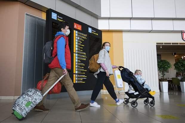 Пересадка в Стамбуле: Что делать пассажирам после закрытия Турции и как вернуться домой