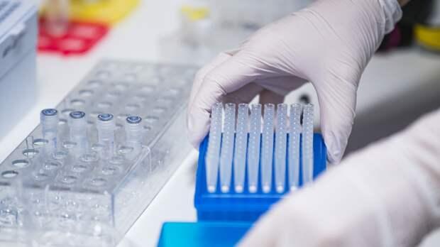 Число выявленных случаев COVID-19 в Молдавии достигло 253 567