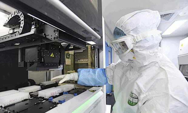 Токсичная Украина:  что производят в американских биолабораториях?