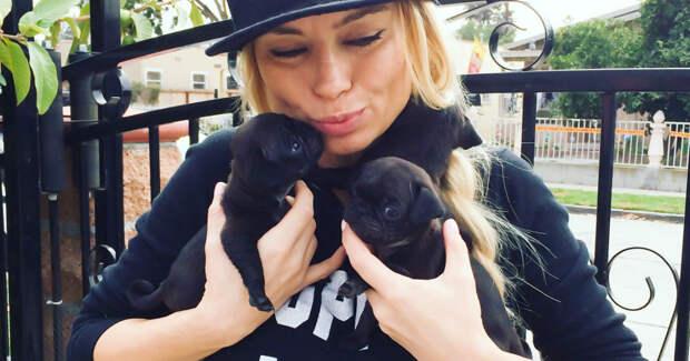 """Её называют """"королевой мопсов""""! Отважная Изабелла спасает животных по всему миру, лечит и отдает в добрые руки)"""