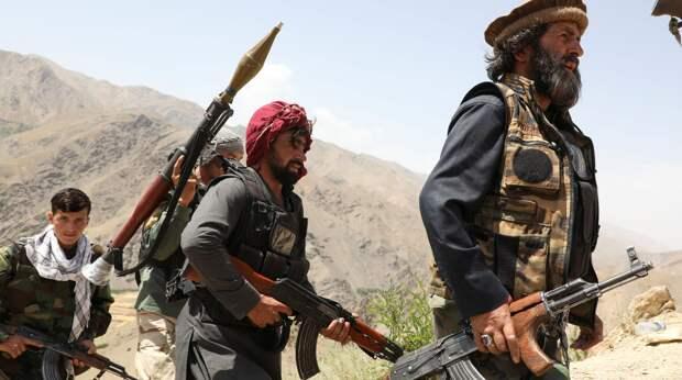 Что происходит в Афганистане и почему Москва ведет переговоры с «Талибаном»