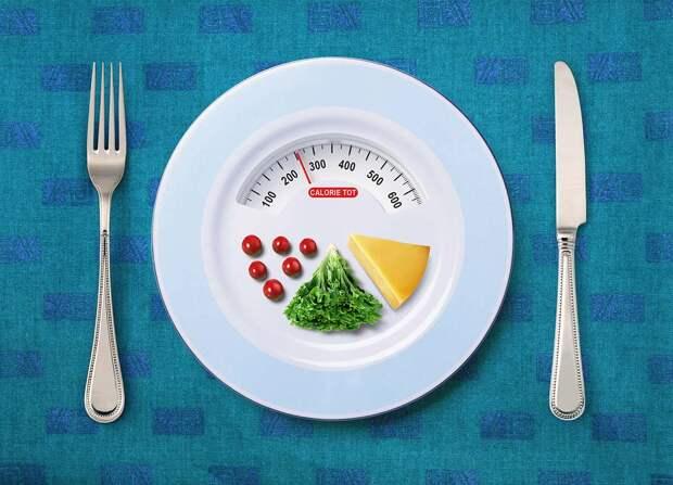 Как считать калории —методы