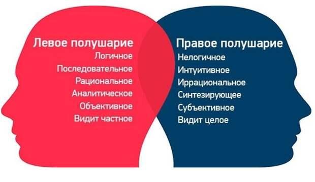 Из Яндекс-коллекции