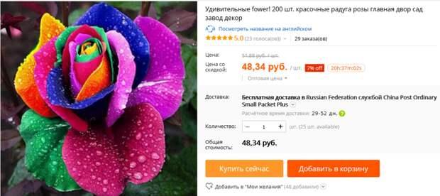 Роза с разноцветными лепестками. алиэкспресс, обман, семена, фотошоп
