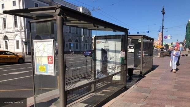 В Петербурге могут ввести новый способ борьбы с нелегальными перевозчиками