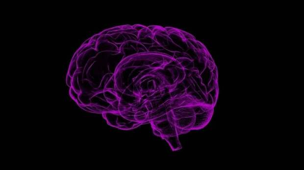 Психофизиолог Лебедев предупредил об опасности раннего старения мозга