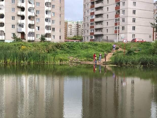 Три зеленых зоны обустроят в Устиновском районе Ижевска