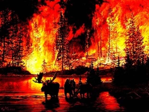 В Якутии отменили режим ЧС и сразу открыли сезон охоты на уцелевших в пожарах животных