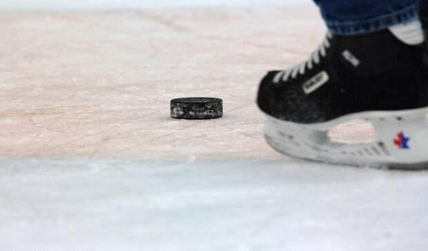 Алексей Бадюков: НХЛ— это мечта Яшкина, оставаться вКХЛ нелогично