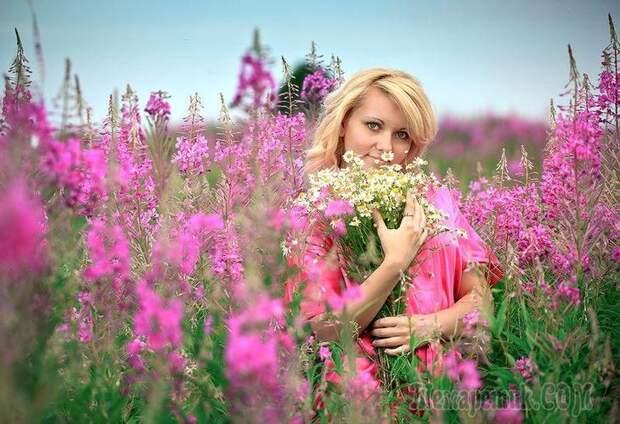 Растение-лекарь: 12 целебных свойств кипрея