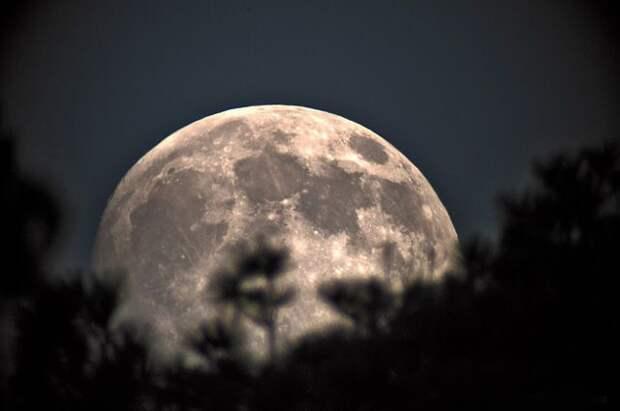 Россияне смогут увидеть суперлуние и лунное затмение 26 мая