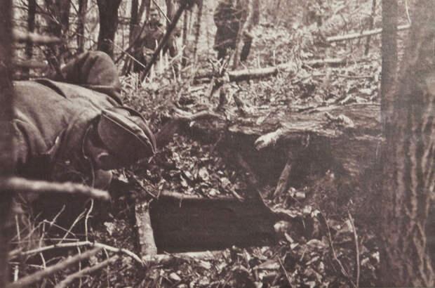 Во Львове потребовали от Европы репараций за разгромленное в СССР бандеровское подполье