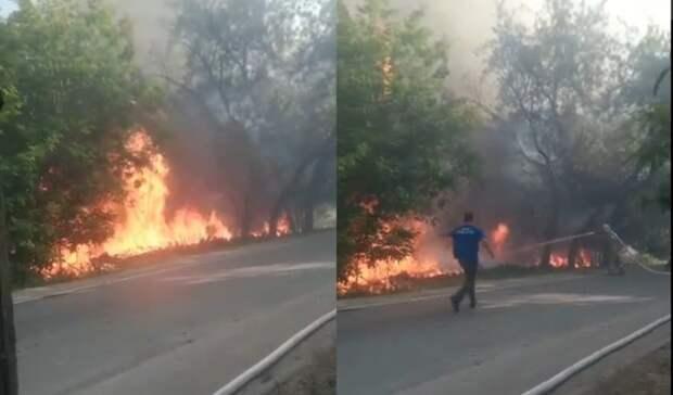 Около набережной Тюмени на Береговой загорелся лес и дом