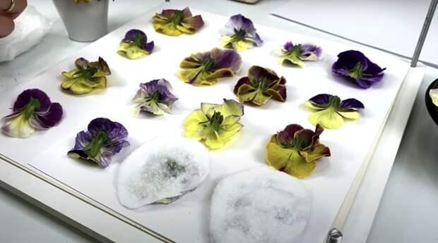 Простейшие способы сушки цветов для творчества